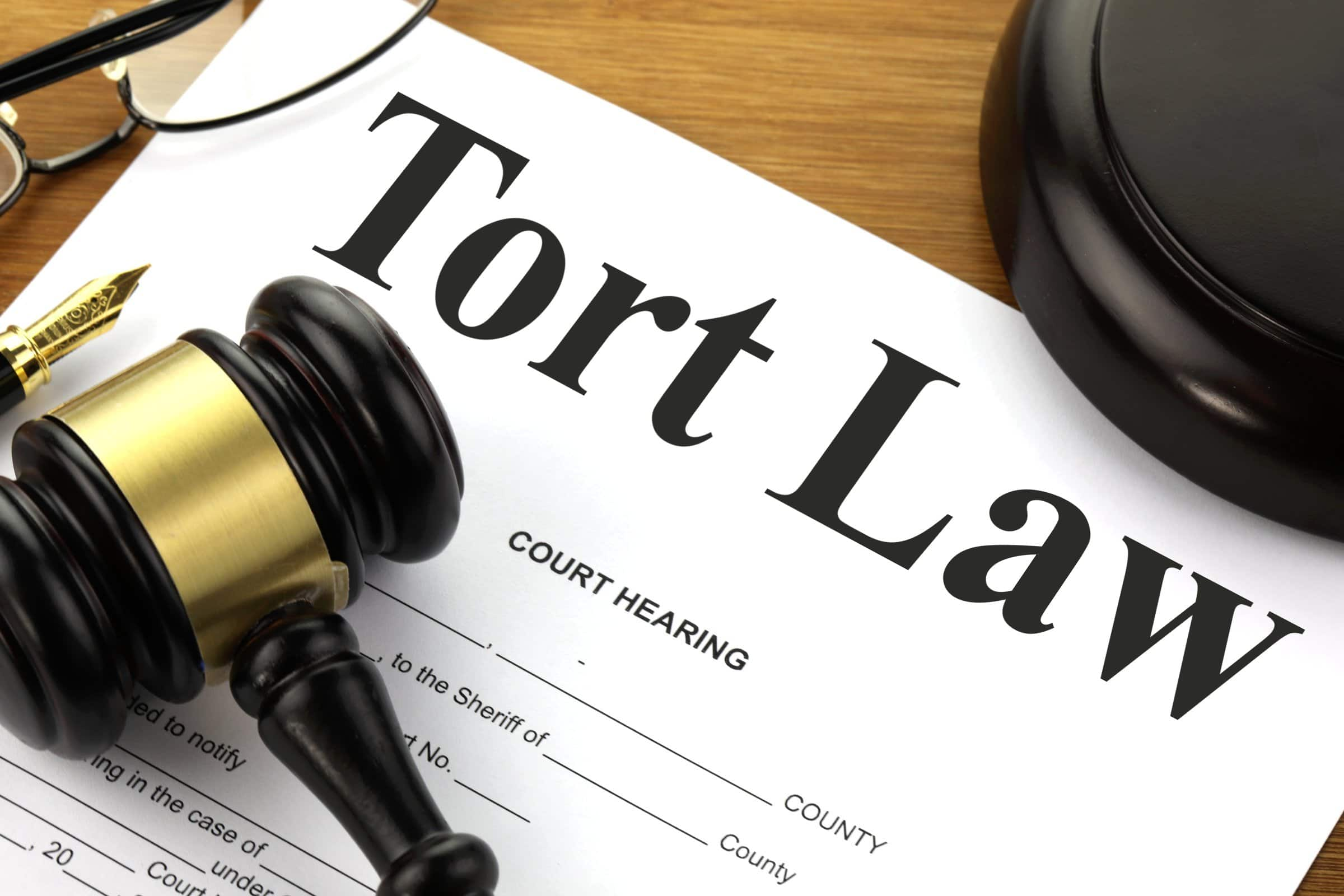 filing a claim under tort law